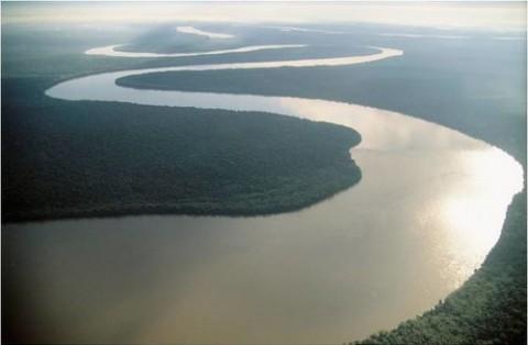 人生は川の流れのごとく 流れたいところを流れたいように流れる
