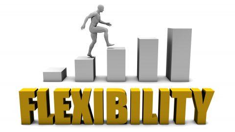 柔軟性を発揮しろ! よく聞くことばですが、実際にはどうしたら良いのでしょう? 柔軟性とは? 心の柔軟性の正体とは?