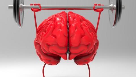 脳は使い方次第 あなたがどんな態度でいるか?