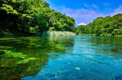 人生、川のごとく 自然は偉大なメンター 川の流れに人生を学ぶ